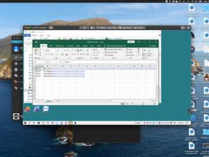 Screen grab of spreadsheet as seen from Team Viewer